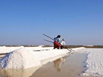 Gujarat salt industry hit by US-China trade war