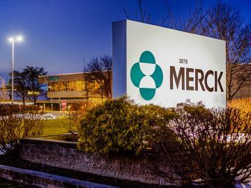merck_sm