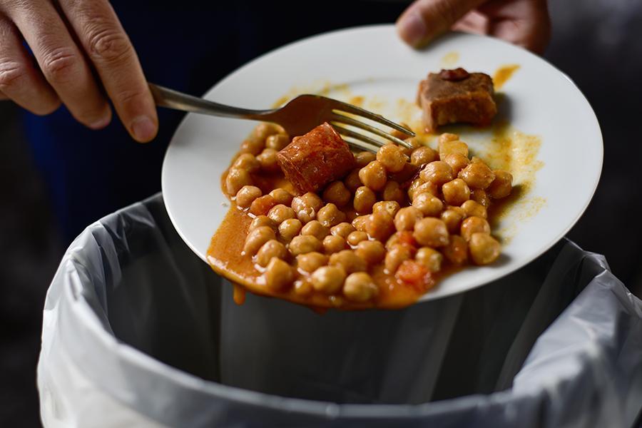 Waste-food_sm