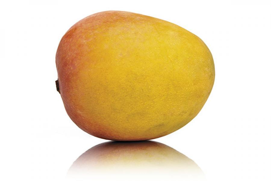 The maligned mango and other clichés writers fear